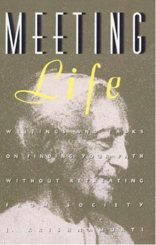 Book Cover: Meeting Life